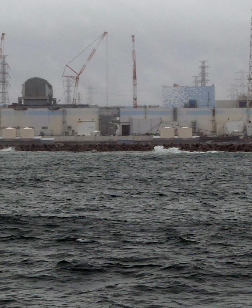 Fukushima Radionuclides
